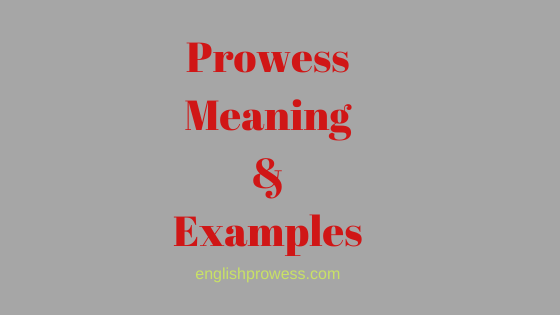 Prowess meaning and examples